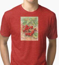 Strawberries Tri-blend T-Shirt