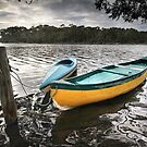 Moored on Lake Tabourie by Annette Blattman