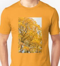 Yellow leaves autumn trees Unisex T-Shirt