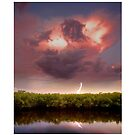 Lightning strikes over the mangrove - on the River Braden by Mal Bray