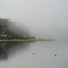Morning mist in Skien by julie08