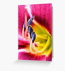 ECSTASY Greeting Card