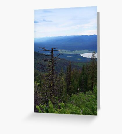 Swan Lake (Montana, USA) Greeting Card