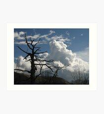 Dead tree and cumulus cloud Art Print
