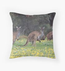 kangaroos on yellow flowers Throw Pillow
