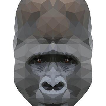 gorilla by danielesaturn