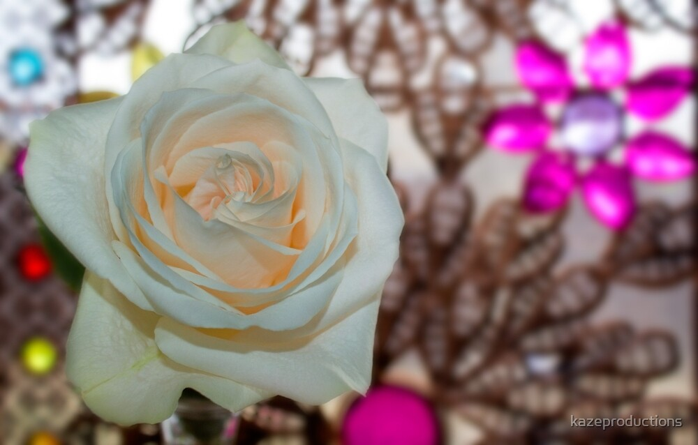 Single lovely white rose by kazeproductions