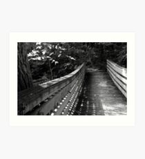Wetland Bridge in August BW Art Print