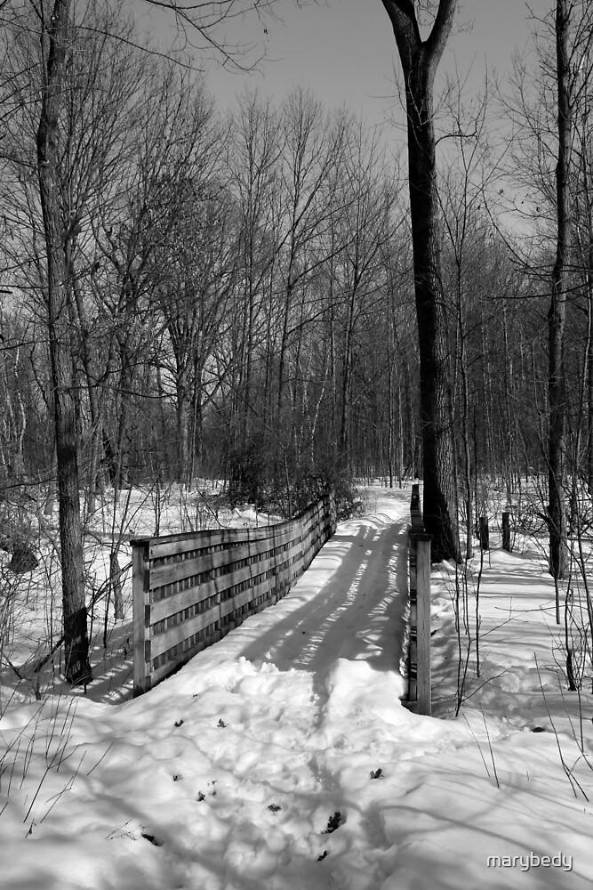 Hiking Trail Bridge with Shadows 1 BW by marybedy