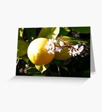 Lemon Entry, My Dear Watson Greeting Card