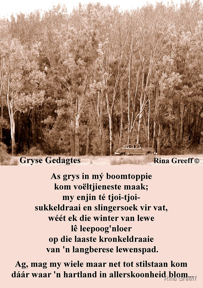 Gryse Gedagtes by Rina Greeff