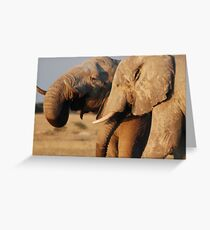 Contented ellies Greeting Card