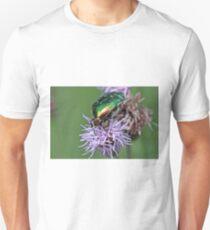 Green Rose Chafer (Cetonia aurata) T-Shirt