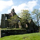 Cartington Castle, Northumberland. by Ron117