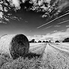 Quick Straw McGraw by Philip  Whittaker
