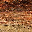 Canyon Wall Up Close and Personal by Julia Washburn
