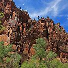 Zion National Park by Julia Washburn