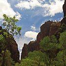 Zion Canyon by Julia Washburn