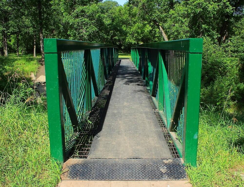 Steel Pedestrian Bridge by rhamm