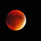 My Blood Red Moon  by lorilee