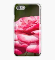 Layered Cake iPhone Case/Skin