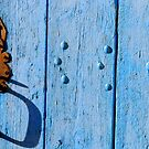 Rust and blue by Jean-Luc Rollier