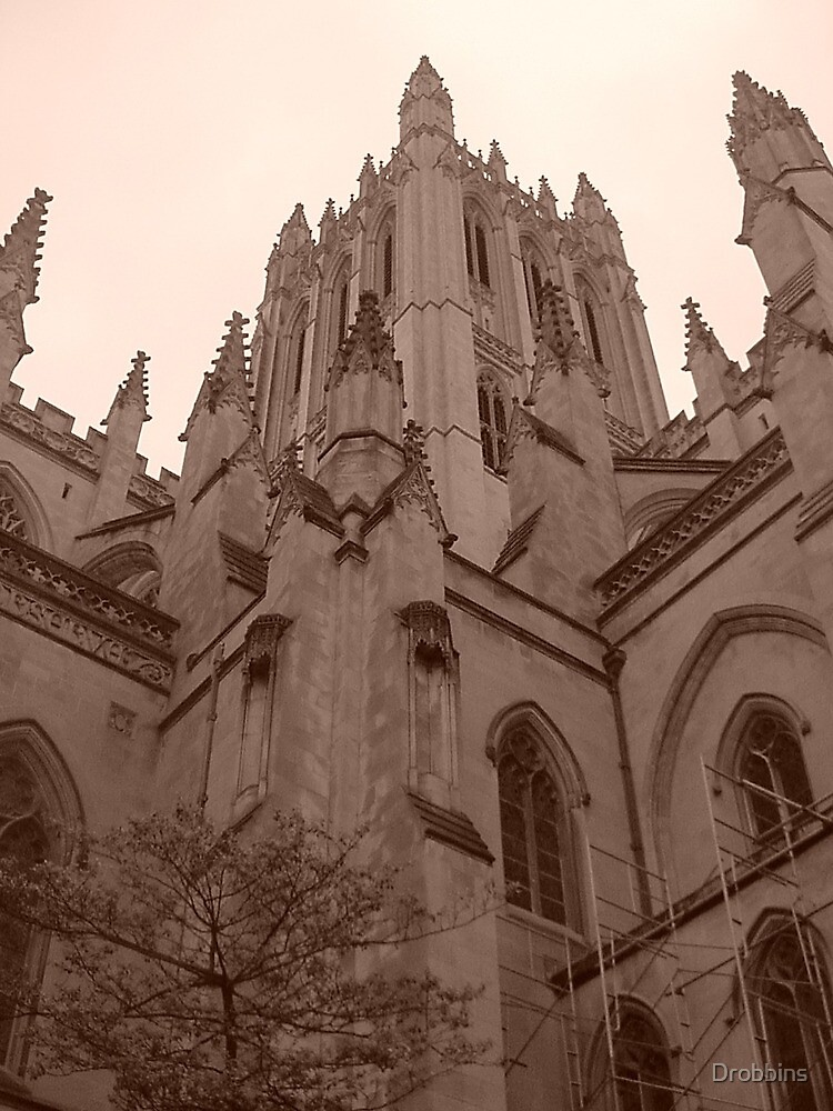 Cathedral by Drobbins