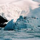 EXTREME ICEBERG AT PORTAGE by judyann