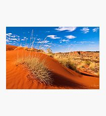 Sand Country Photographic Print