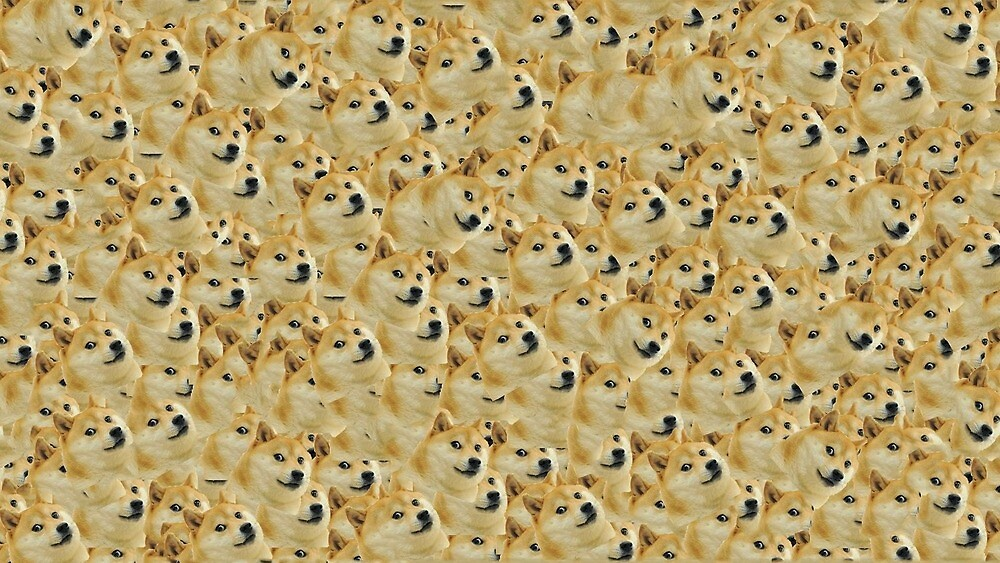 Doge Collage by lauramccorddd