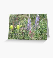 Nature's Garden Greeting Card
