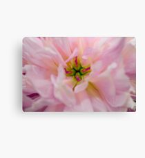 Floral Macro Canvas Print