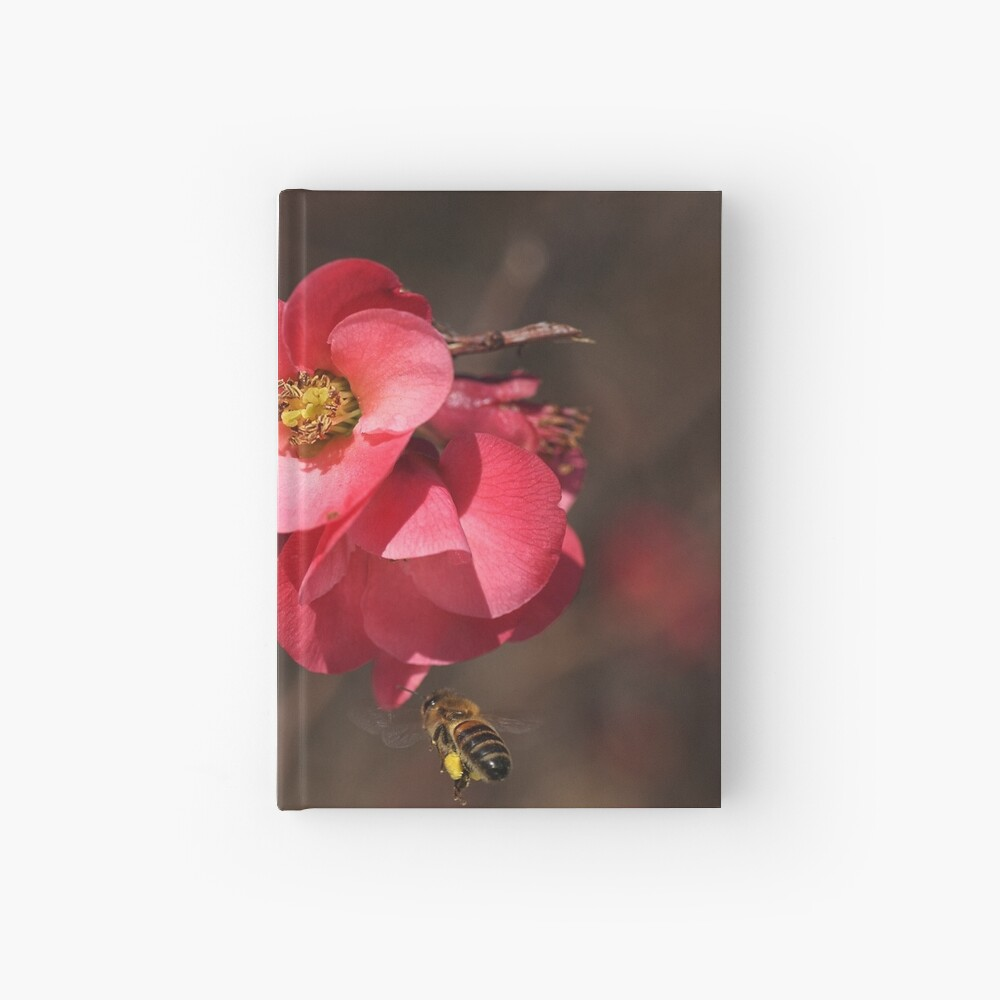 Yum - Flowering Quince Hardcover Journal