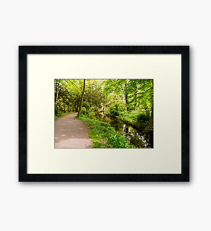 Where Does This Path Go To Framed Print
