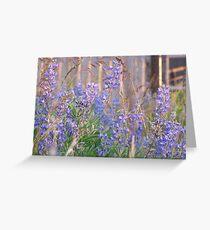 Lupin Blue Greeting Card
