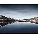 Glen Affric by MattD