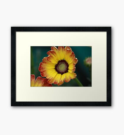 Yellow smiling face Framed Print