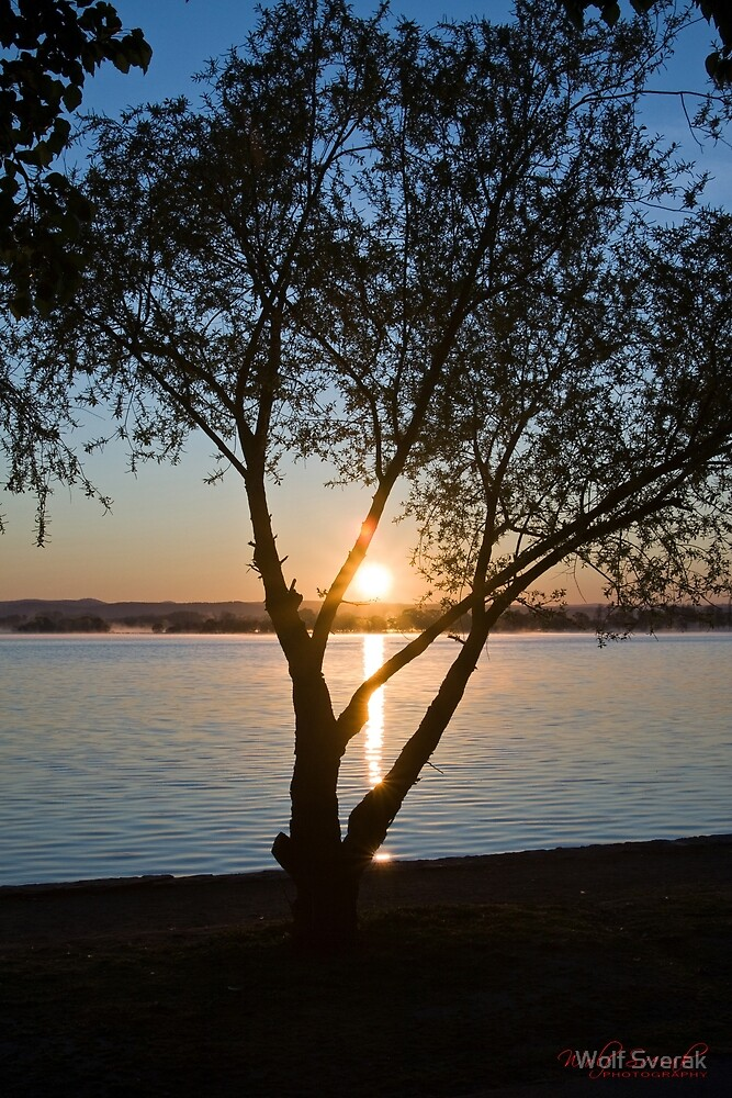 Sunrise at Lake Burley Griffin in Canberra/ACT/Australia (1) by Wolf Sverak