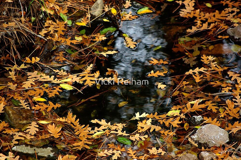 Autumn Leaves by Vicki Pelham