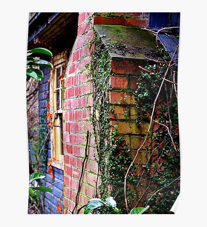 The Garden Wall Poster