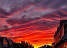 Crimson sunset by Yelena Rozov