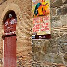 Bull Ring - Toledo, Spain by ACBPhotos