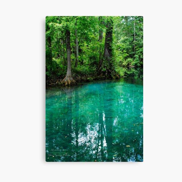 Silver Springs Florida Canvas Print