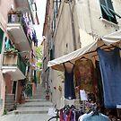 Street In Cinque Terre by joycee