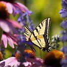 Golden Wings by Brian Bo Mei