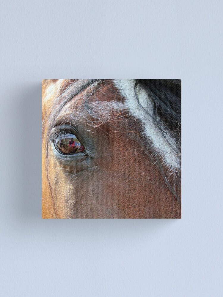 Alternate view of War Horse Canvas Print