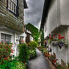 Portrait of a Hawkshead Alley by Jamie  Green