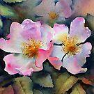 Dog roses by Ann Mortimer