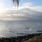 Port Douglas evening tide by chris51