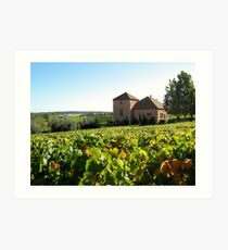 Picardy Winery - Pemberton Region Art Print